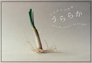 201306yamamoto1.jpg