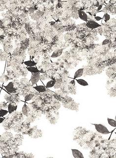 iSun-mi-KIm-03.jpg
